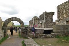 Día de la Seta de Primavera en Fuente del Arco_20218_44 (53)