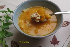 Gazpacho de poleo (F. Durán)