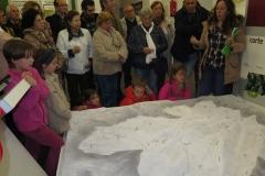 XXXVI Día de la Seta de Extremadura en Cañamero (11)