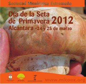 cartel seta primavera 2012b