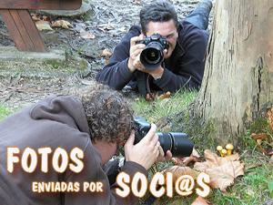 Fotos socios MICOEX
