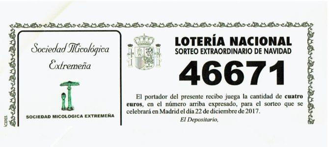Lotería Navidad MICOEX