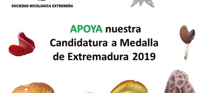 Candidatura a Medalla de Extremadura 2019