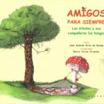 Libro de setas para niños