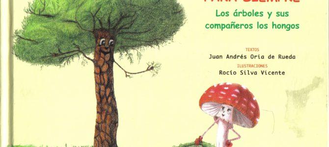 Libro Infantil de setas