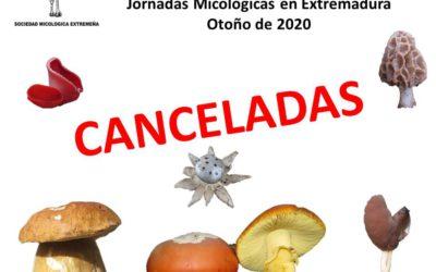 Canceladas las Jornadas Micológicas en Extremadura Otoño 2020