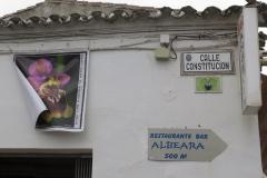 Día de la Seta de Primavera en Fuente del Arco_20218_44 (21)