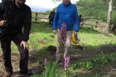 Día de la Seta de Primavera en Fuente del Arco_20218_44 (45)