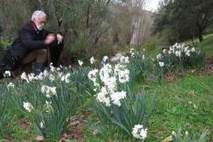 Día de la Seta de Primavera en Fuente del Arco_20218_44 (6)