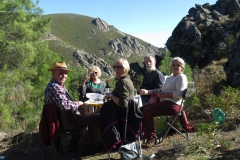 XXXVI Día de la Seta de Extremadura en Cañamero (5)