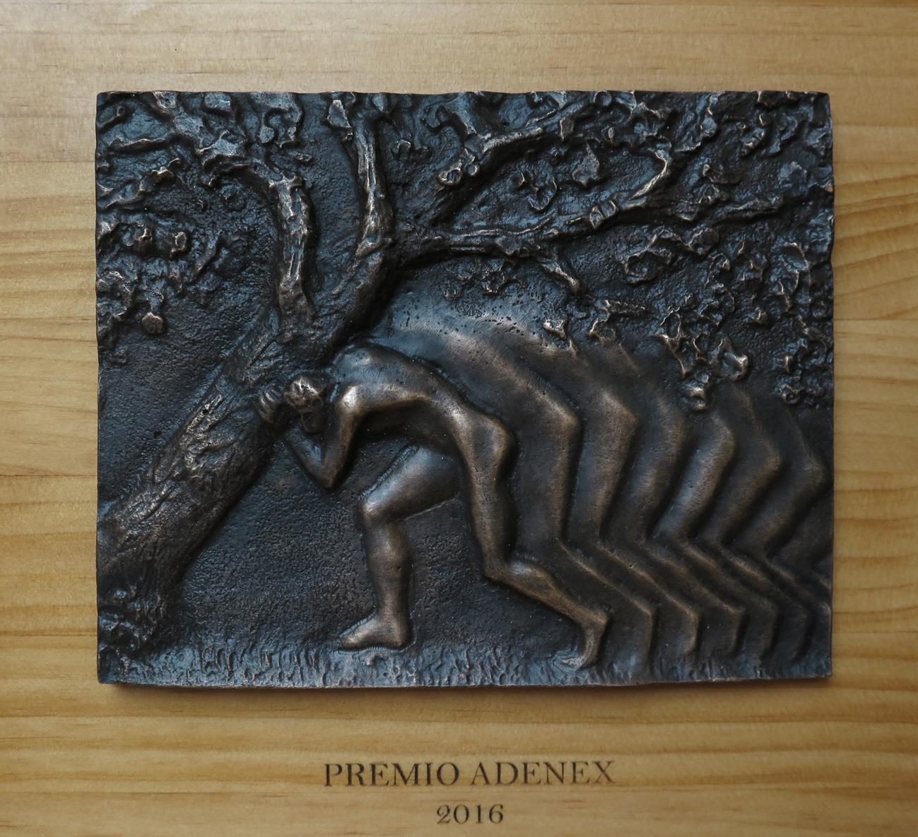 Premio ADENEX 2016 en la Asamblea de Extremadura
