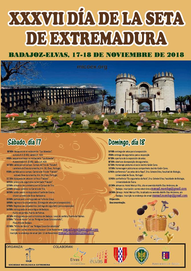 XXXVII Día de la seta de Extremadura Badajoz – Elvas