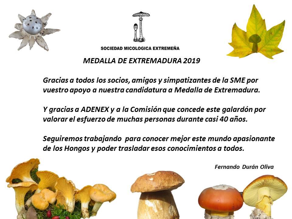 MICOEX – Medalla de Extremadura 2019
